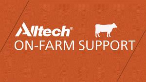 Alltech logo image