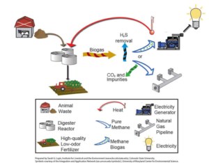 Anaerobic Digester Systems graphic